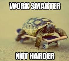 work smarter tortoise